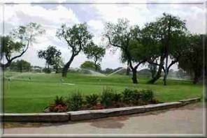 Trees and landscaping at the Municipal Golf Course